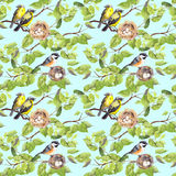Ptaki, gniazdeczko na gałąź deseniowy target668_0_ bezszwowy akwarela Fotografia Royalty Free