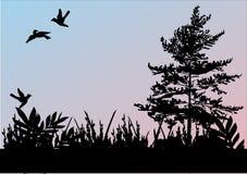 ptaki grass drzewa trzy Obrazy Stock