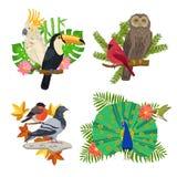 Ptaki I kwiaty Ustawiający ilustracja wektor