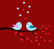 Ptaki i miłości czerwień Obrazy Royalty Free