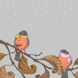 Ptaki na gałąź Zdjęcie Stock