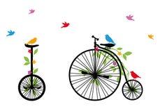 Ptaki na retro bicyklu, wektorowa ilustracja Zdjęcia Stock
