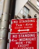 Ptaki stoi na żadny pozyci podpisują wewnątrz miasto Nowy Jork zdjęcia stock
