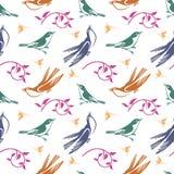 Ptaki tapetowi Zdjęcie Royalty Free