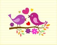 ptaki uroczy Zdjęcia Stock