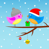 Ptaki w nakrętkach Obrazy Stock