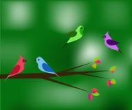 Ptaki w wiosny zieleni Obraz Stock