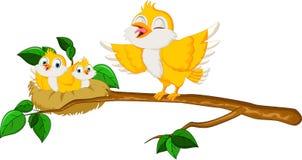Ptaki z jej dwa dziećmi w gniazdeczku Zdjęcie Stock