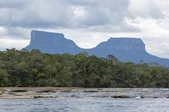 PtariTepui在Canaima国家公园,委内瑞拉 免版税库存照片