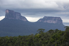 PtariTepui在Canaima国家公园,委内瑞拉 免版税库存图片