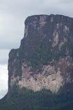 PtariTepui в национальном парке Canaima, Венесуэле Стоковое Фото