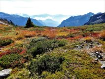 Ptarmigan ridge trail with fall color Stock Photography
