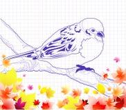 ptasi doodle royalty ilustracja