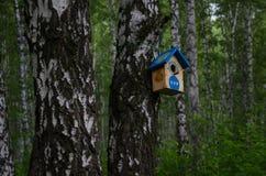 Ptasi dozownik dla lasowych ptaków Opieka natura fotografia stock