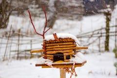 Ptasi dozownik pod śniegiem obrazy stock