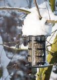 Ptasi dozownik w śniegu Zdjęcie Royalty Free
