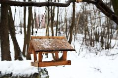 Ptasi dozownik w zimie zdjęcie stock