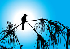 ptasi drzewo ilustracja wektor