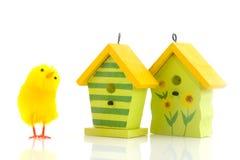 ptasi kurczątek Easter domy obraz stock