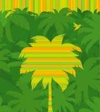 ptasi latający target987_0_ dżungli drzewko palmowe tropikalny Fotografia Royalty Free