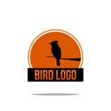 Ptasi logo Fotografia Stock