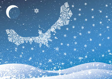 ptasi śnieg Zdjęcia Royalty Free