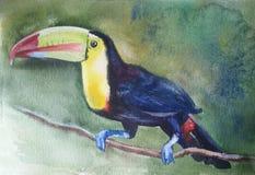 Ptasi pieprzojad siedzi na gałąź ilustracji