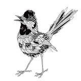 Ptasi tatuaż psychodeliczny, zentangle styl również zwrócić corel ilustracji wektora Obraz Stock