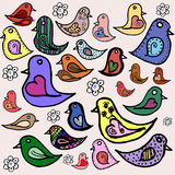 Ptasia kolekcja Obraz Royalty Free