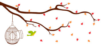 Ptasia opuszcza klatka od gałąź Obrazy Stock