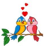 Ptasia para w miłości Zdjęcie Royalty Free