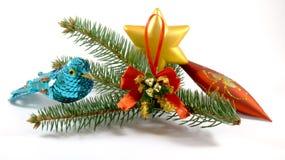 Ptasia pobliska świerczyny gałąź z choinek zabawkami Zdjęcia Stock