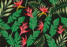 Ptasich o raju kwiatów i tropikalnych liści bezszwowy tło ilustracji