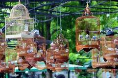 Ptasie klatki, Cześć Chi Minh miasto, Wietnam Zdjęcia Royalty Free