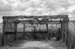 Ptasiego dopatrywania stora Wzdłuż przyrody przejażdżki, Czarny I Biały, brązu park W Kolorado fotografia royalty free
