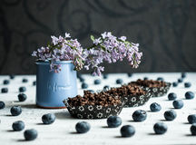 Ptasiej wiśni mąka Zasycha z czarnymi jagodami i bez kwitnie Zdjęcia Royalty Free