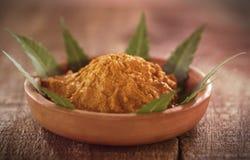 Pâte médicinale de safran des indes avec des feuilles de neem Images stock