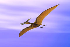 Pteranodon. Scene flying dinosaur, executed in 3 D Royalty Free Stock Photography
