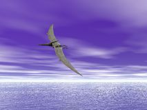 Pteranodon. Pterodactyl or Pteranodon flying over the ocean Royalty Free Stock Image