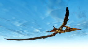 Pteranodon bird flying - 3D render Stock Photo
