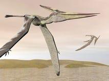 Pteranodon die 3D vliegen - geef terug Stock Afbeeldingen