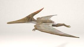 Pteranodon-Dinosaur. 3D Computer rendering illustration of Pteranodon dinosaur Royalty Free Stock Photos
