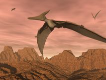 Pteranodon dinosaurs flying - 3D render Stock Image