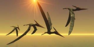 Pteranodon gada lot ilustracji