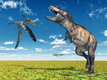 Pteranodon and Tyrannosaurus Rex. Computer generated 3D illustration with the Pterosaur Pteranodon and the Dinosaur Tyrannosaurus Rex Royalty Free Stock Image