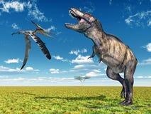Pteranodon und Tyrannosaurus Rex stock abbildung