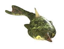 Pteraspis - pesce preistorico Immagine Stock Libera da Diritti