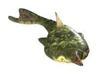 Pteraspis - prähistorischer Fisch Lizenzfreies Stockbild