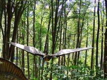 pterodactyl Πετώντας δεινόσαυρος στοκ εικόνα με δικαίωμα ελεύθερης χρήσης