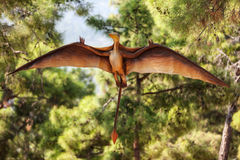 Pterodactyl dinosaur flying at forest. Pterodactyl - prehistoric era wing dinosaur flying at forest Royalty Free Stock Photo